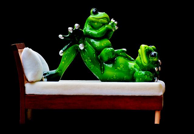 žáby v posteli.png