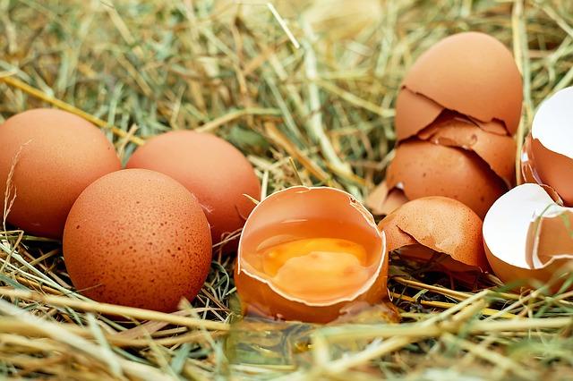 syrová vejce.jpg